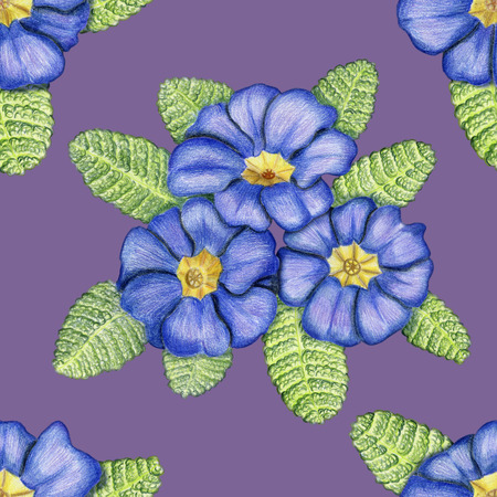 Beautiful penciled pattern with primulas on lilac background