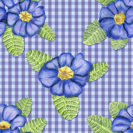 Beautiful penciled pattern with primulas on checkerboard cloth