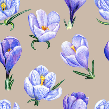 Beautiful penciled pattern with crocuses on pale background