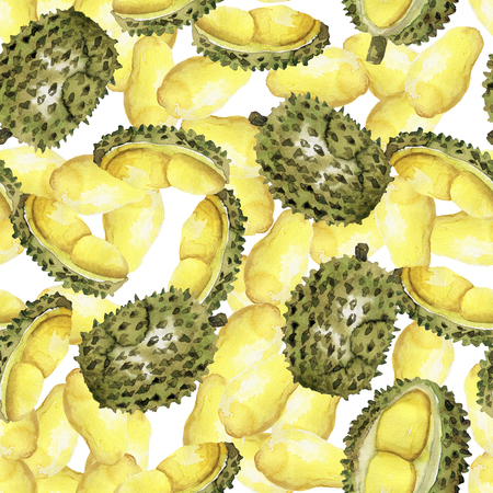 Durian pattern of seamless Imagens
