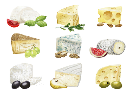 Watercolor cheese compositions with addings 写真素材