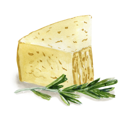 Watercolor Parmesan cheese and rosemary Stok Fotoğraf