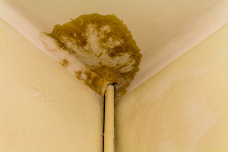 Peeling paint on the ceiling. Rusty water leaking pipe.