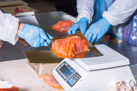 Fish production. Worker weighs fish pieces on the scales Stock Photo