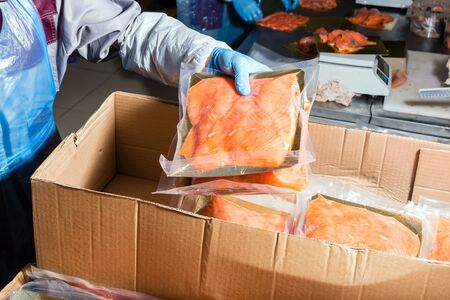 Fish production. The worker puts the finished product in a corton box for transportation. Stock Photo