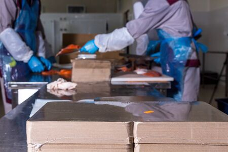 Fish production. Worker lays out pieces of fish on the packaging