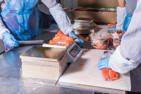 Fish production. Worker weighs fish pieces on the scales