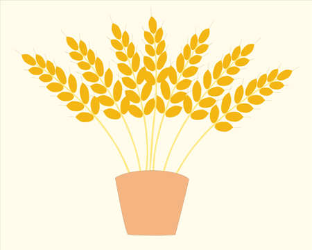 patties: In pot, are located several bunches of the wheat.