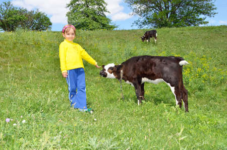 warmly: The Child and calf, on meadow. The Herb and flowerses. Stock Photo