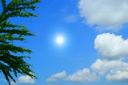 Sun in frame photo