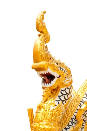Head of King of Nagas photo