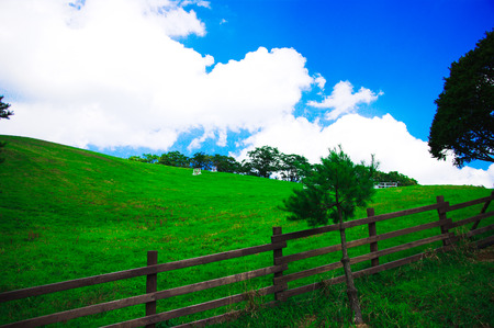 fenced in: Fenced-off farm in turf up blue sky and white cloud nature view Stock Photo