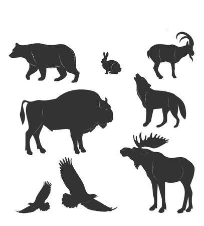 brown hare: set of animals,wild beasts,forest fauna,vector images isolated on white background