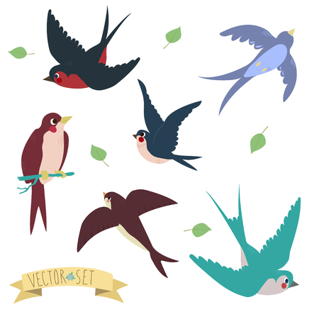 Zwaluwen op witte achtergrond Drie zijn twee zitten zwaluwen en drie vliegende zwaluwen in cartoon-stijl