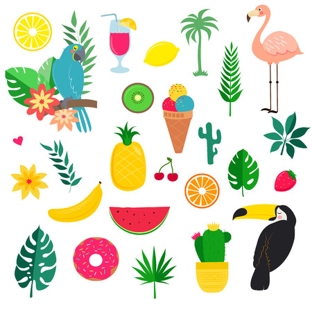vector Set of summer tropicheskiy elements for design Ilustração
