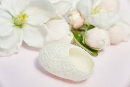 silkworm cocoon close-up for beauty treatments and flowers