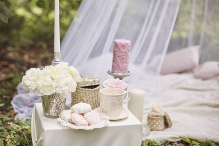 tea party on a picnic in the forest with a tent