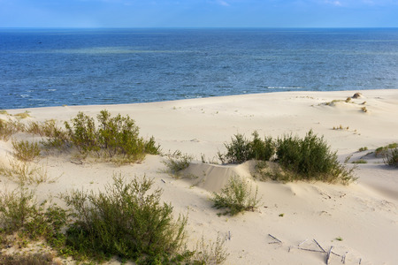 separates: Sand dunes of the russian part Curonian Spit in autumn. It is a 98 km long curved sand-dune spit that separates the Curonian Lagoon from the Baltic Sea coast.