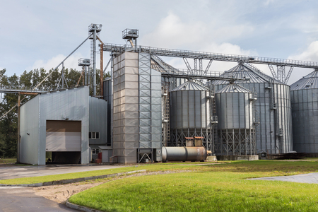 Exterior of Agricultural Silo building with storage tanks for agricultural crops processing plant, drying of grains, rape, wheat, corn, soy, sunflower. Archivio Fotografico