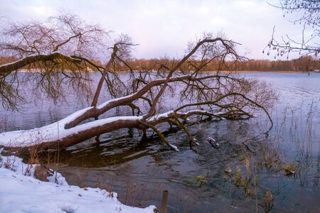 Beautiful winter landscape with lake in evening time.