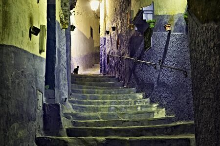 Black cat in medina of Chefchaouen, Morocco. The city is noted for its buildings in shades of blue and that makes Chefchaouen very attractive to visitors.