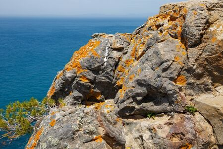 View of the cliff details near the Atlantic Ocean coast in sunny day.