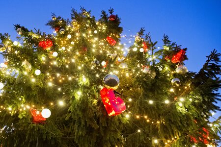Beautiful close up view of the Christmas tree and shining toys with evening blue sky on the background.