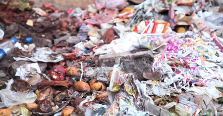 Paper and Food Waste - Rotten fruit and vegetable waste in a dustbin.