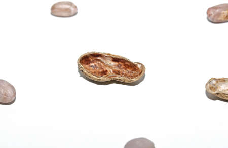 Top view of Peanuts hulls nut shell and peeled peanuts isolated on white backgrounds