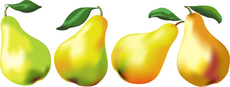 executed: Yellow juicy pears on a white background it is executed with mesh tool