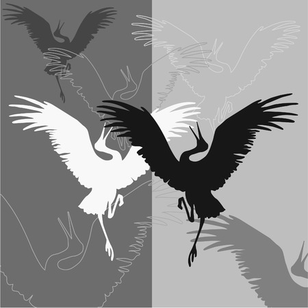 stork: Abstract black and white contours of birds