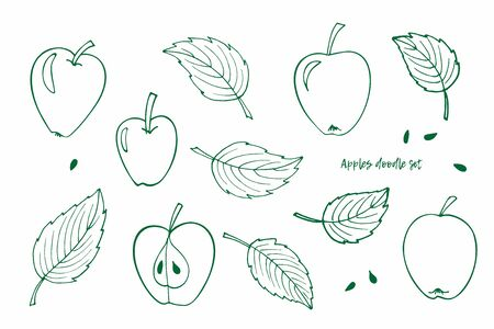 Vector clipart set of Apples and Leaves. Green Doodle sketch illustration. Whole apple, half apple, leaves, seeds. Perfect for packaging, scrapbooking, party design, logo, wrapping, invitation, card Foto de archivo