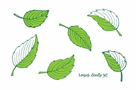 Set of green leaves. Spring and summer Doodle sketch illustration. Floral Herb Design elements. Perfect for scrapbooking, party design, logo, wrapping, wedding invitation, greeting card, blog, poster