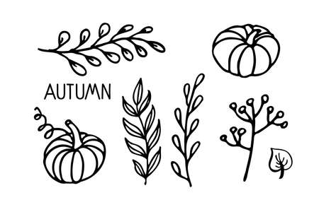 Autumn plants vector set. Linear black and white doodle sketch. Pumpkins, leaves, branches, berries.Hand drawn design elements. For banner, flyer, brochure, card, poster. Autumn nature illustration. Ilustração