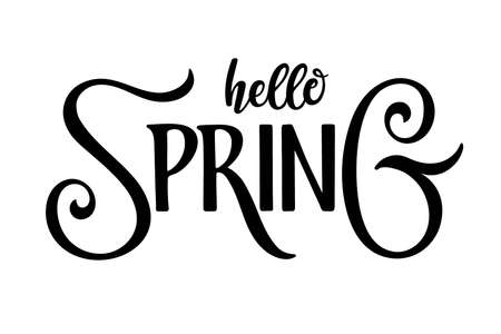Hello Spring calligraphy lettering. Hand drawn Brush Pen design for banner, brochure, card, poster. Spring time illustration. For greeting card, invitation of seasonal spring holiday decor Ilustração