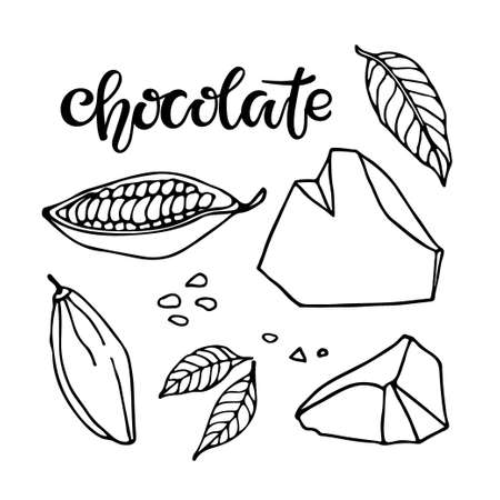 Chocolate set. Vector Hand drawn Cocoa beans, leaves sketch, lump chocolate and Chocolate text on white background. Organic product Doodle sketch for cafe, shop, menu, for manufacturers and sellers Ilustração