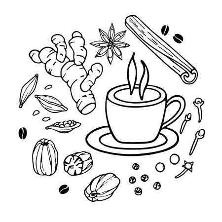 Cup of coffee and spices sketch. Spicy Coffee ingredients set. Hand drawn coffee recipe with spices. Doodle Outline vector illustration. Hot drink. Organic product sketch. Flavor cooking ingredient