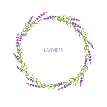 Lavender wreath. Flowers frame. Vector flat grass lavender Illustration. Lavender flowers collection isolated. For save date, inscriptions, photo. Medical plant.