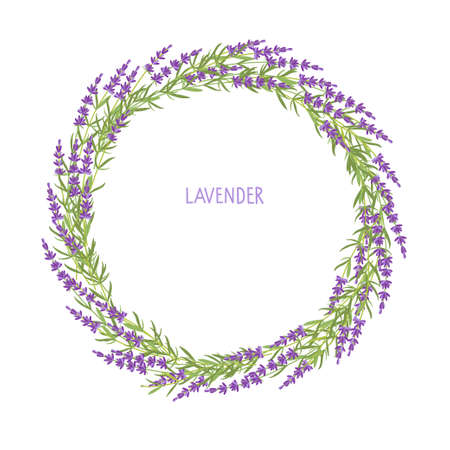 Lilac flowers round frame. Lavender wreath. Vector flat grass lavender Illustration. Lavender flowers isolated For save date, inscriptions, photo. Medical plant.