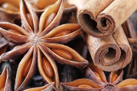cinnamon bark: Close up of typical aromatic Christmas spices - star anise and cinnamon sticks