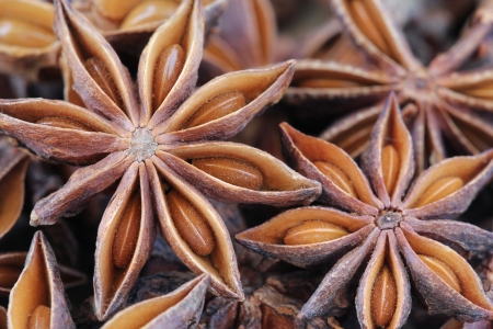 Star anise background