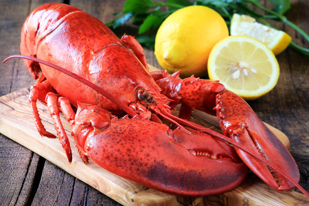 Delicious cooked lobster on wooden cutting board as a concept of Christmas cooking with a candle and fir or pine branches at the  background