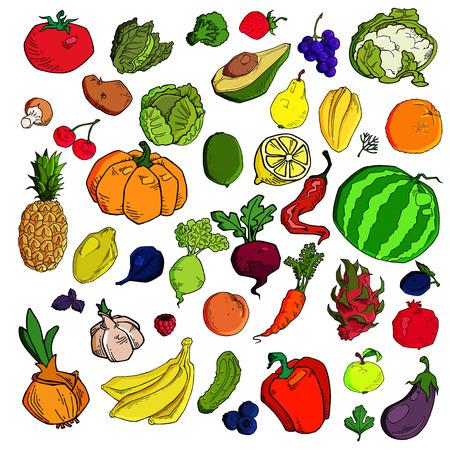 Mega colección de ilustraciones vectoriales de calidad premium de frutas y verduras