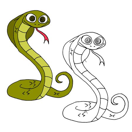 Hand drawn animal for painting with sample.Cartoon snake Illustration