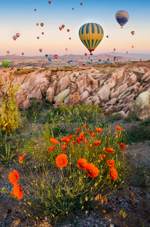 fire flower: Hot air balloon flying over rock landscape with poppies in Cappadocia Turkey Stock Photo