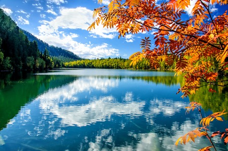 mountain autumn green siberia lake with reflection and red rowan