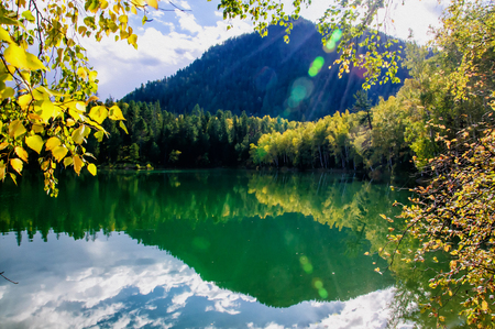 mountain autumn green siberia lake with reflection and the branch of a birch Stockfoto