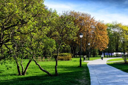 Nice park in the city with trees and small road