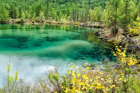 Small forest lake with greenish water in the autumn forest, lava lake