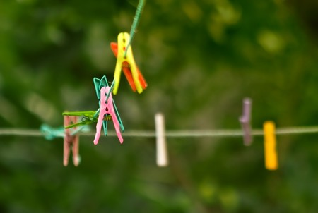 Cloth Pins hanging on the string, amung the trees in the garden. Shallow DOF.